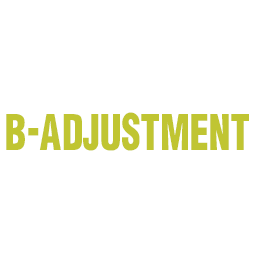 B-ADJUSTMENT