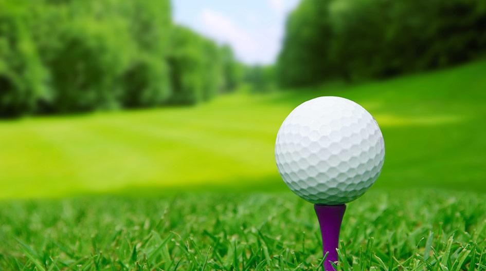 ゴルフ ボール 相性 診断