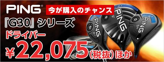 ピンの『G30』シリーズが特別価格!